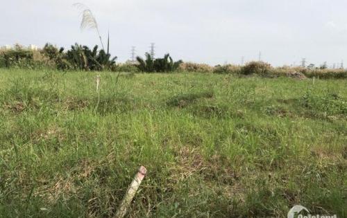 hót ! hót! bán nhanh đất thổ vườn 1.007m hẻm 6m sổ hồng riêng chỉ 5tr5/m tại phạm hữu lầu giáp PMH2
