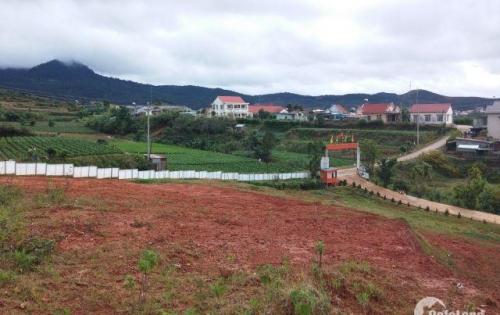 Mở ra cơ hội đầu tư sinh lời cao với những lô đất KQH LangBiang chỉ với giá 1.8 tỷ