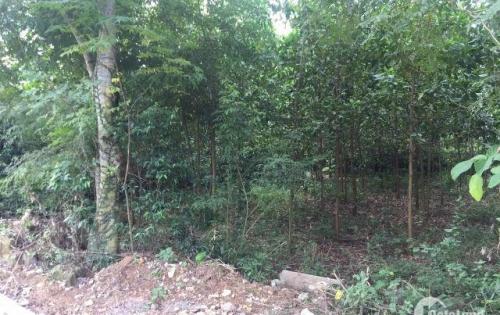 Đất thổ cư 2,1ha giá 1,5 tỷ sát UBND xã Cao Răm, Lương, Sơn, Hòa Bình - Call 0971389191