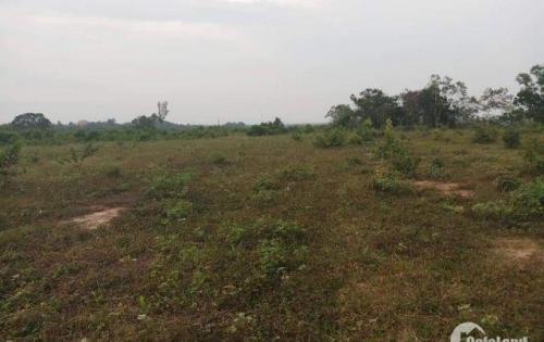 Bán gấp lô đất thổ cư  gần trung tâm  hành chính Nhơn Trạch
