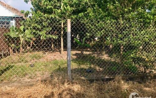Bán đất Nhơn Trạch thổ vườn giá siêu rẻ gần phà Cát Lái, SHR