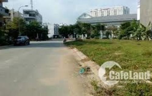 Bán gấp lô đất ở đường Trần Thị Bảy, cách mặt đường Nguyễn Thị Búp 500m.
