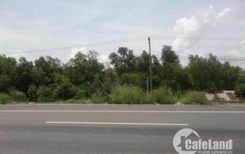 Cần bán đất ngay QL51 thị xã Phú Mỹ - BRVT LH:0906861639