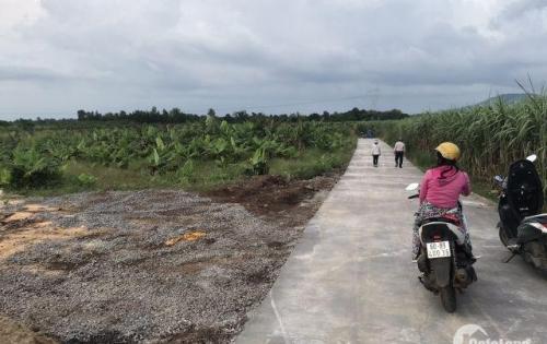 Mở bán dự án mới khu dân cư Lộc Thịnh, Hưng Lộc liền kề QL1A