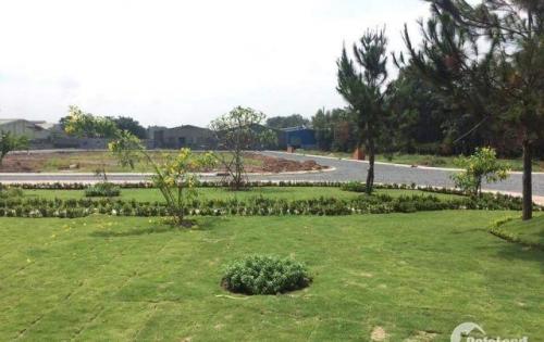 Bán gấp đất nền giá rẻ Thuận An cho khách hàng thiện chí chỉ  1,3 tỷ dt 95m2 đường 17m