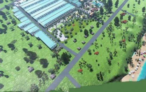 HOT: Người dân thi nhau mua đất tại dự án Seaway Bình Châu của tập đoàn Trường Phát