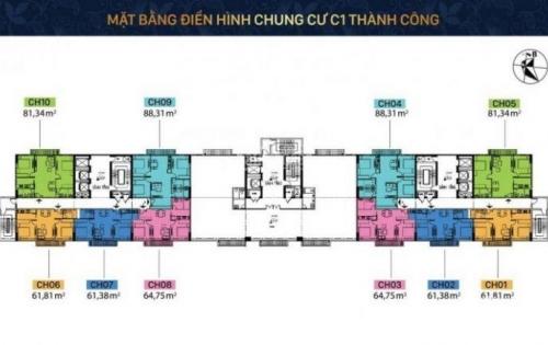 Bán độc quyền các căn hộ tại chung cư C1 Thành Công, giá chỉ từ 39tr/m2