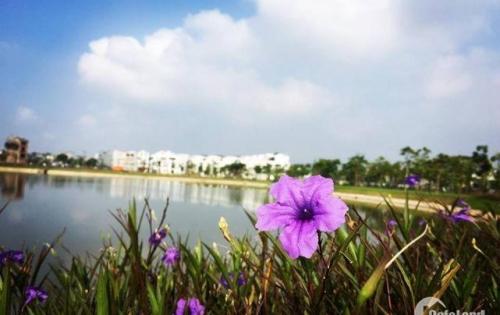 Chỉ cần thanh toán trước 30% là sở hữu ngay căn hộ 2 phong ngủ đẹp tại Bách Việt Areca Gareden
