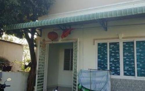 nhà cấp 4 nhỏ nhắn phường tân phong, sổ hồng riêng , thổ cư 100% sdt 0901699502