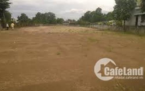 Chú 10 kẹt tiền bán rẻ lô đất mặt tiền Quốc Lộ 50 trung tâm Cần Giuộc. DT 240m2, chỉ 850tr 01697978009