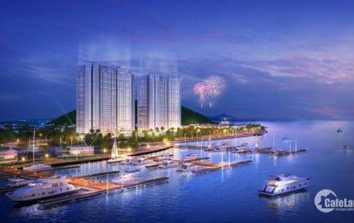 Cần bán gấp căn hộ 61m2 chung cư cao cấp The Sapphire Residence Hạ Long, CK lên đến 120 triệu