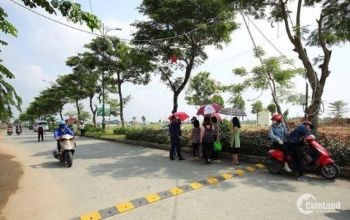 Bán gấp nhà đường Trần Văn Giàu, Bình Chánh, 99m2, SHR