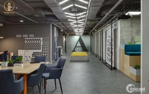 Căn hộ Officetel trung tâm Quận 7 - Giải pháp tiết kiệm chi phí cho doanh nghiệp