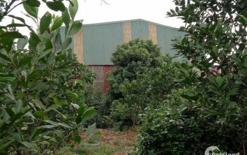 Bán kho, nhà xưởng tại đường 21A, Quốc Oai, Hà Nội diện tích 3600 m2 giá 5.5tỷ
