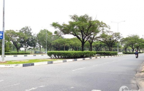 ĐỊNH CƯ CẦN BÁN GẤP LÔ ĐẤT 600M2 TRONG KHU ĐÔ THỊ SINGAPORE GIÁ 320 TRIỆU
