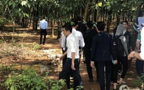 Bán đất đẹp mặt tiền đường Phước Bình, Long Thành, Đồng Nai,