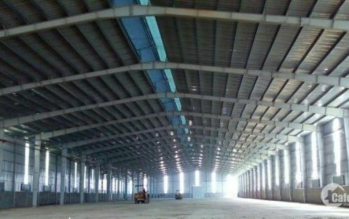 Chính chủ cho thuê 8000m2 kho xưởng tại KCN Biên Hòa 1, Đồng Nai