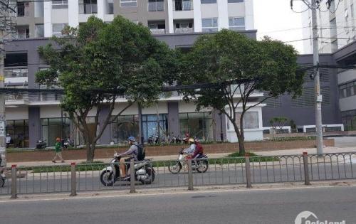 cho thuê lô shop trệt Richstar,239 Hòa Bình,Hiệp Thành,Q.Tân Phú,100m2,giá 40 triệu