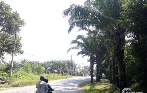 Top 5 dự án bất động sản nào đang HOT nhất tại TP Biên Hòa Đồng Nai?