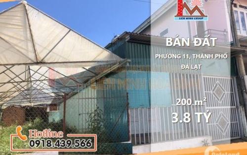 Bán đất giá tốt phường 11, Đà Lạt- Liên Hệ 0916 470 266