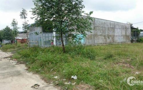 Cần tiền chữa bệnh, bán gấp lô đất 300m2, đất thổ cư, giá 590tr/150m2