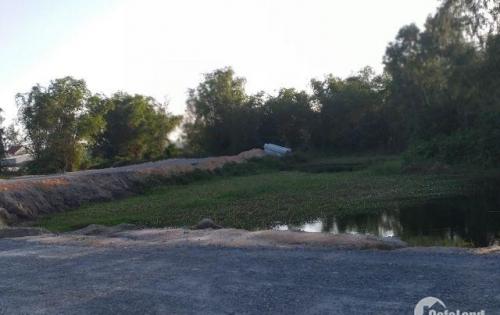 The Royal River - 100% mặt tiền sông Cổ Cò, Bắc Hội An giá chỉ 12,5 tr/m2