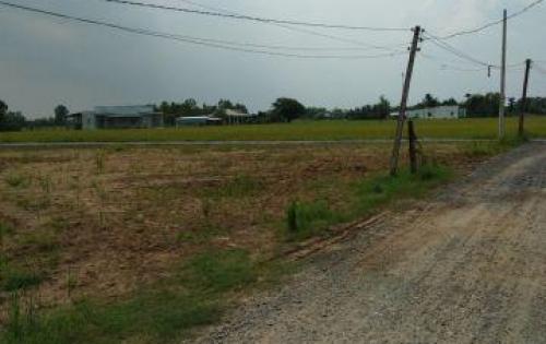 Đất nền 155m2, 174m2  đường số 2 Bình Lợi - Hòa Khánh Đông