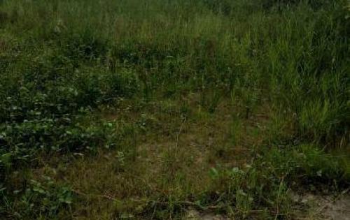 Đất nền Đức Hòa 90m 2  - thổ cư 100% giá rẻ