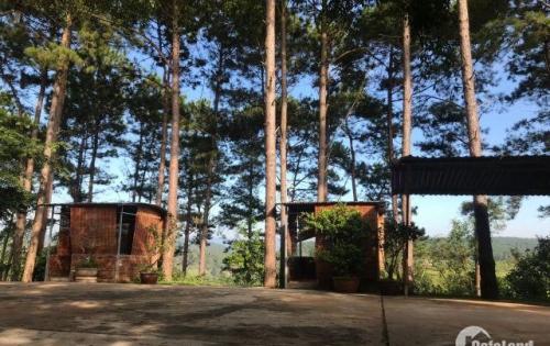 Bán đất mặt tiền quốc lộ 27, khuôn viên rộng 18.000m²,vị trí đẹp huyện Đức Trọng.