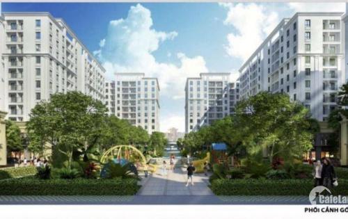 Nhận đặt chỗ đất nền Hà Khánh, Hạ Long chỉ từ 11tr/m2