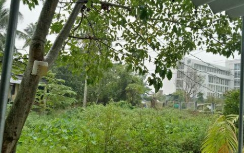 Bán đất nền KQH Nam Vỹ Dạ, gần Trung Tâm TP Huế.
