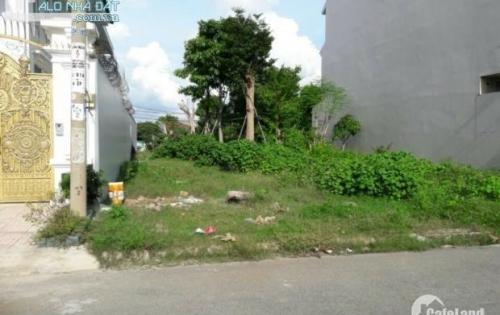 Bán 2 lô đất đường huỳnh hữu trí huyện bình chánh