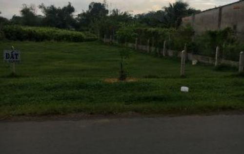 Bán gấp lô đất 479m2 đường Nguyễn Văn Linh, Bình Chánh giá 2,7 tỷ