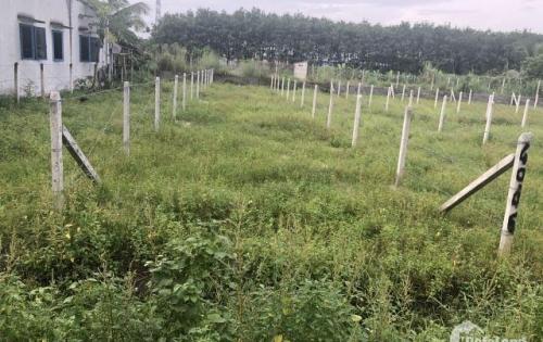 Bán đất Củ Chi mặt tiền đường-SHR-Bao giá toàn khu vực_LH: 0908.095.442