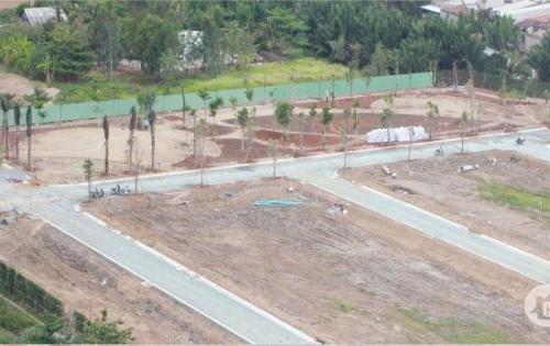 Bán Đất Nền Củ Chi Giá Rẻ | Sở Hữu Ngay Chỉ Với 320 Triệu