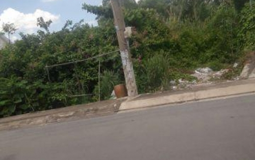 Bán đất mặt tiền đường Đào Sư Tích, xã Phước Lộc, huyện Nhà Bè diện tích: 6100m2