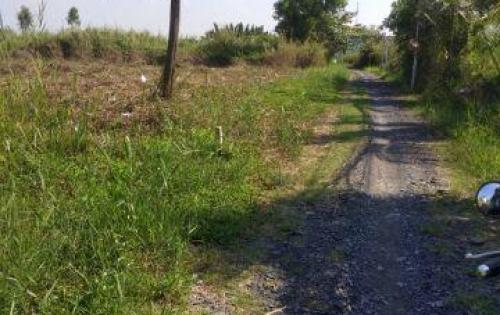 bán nhanh đất 26x33m hẻm 6m sổ hồng riêng dự phóng 2 mặt tiền đường