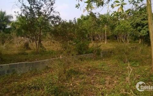 Bán gấp đất Lương Sơn – Hòa Bình, mặt đường nhựa, đất thổ cư