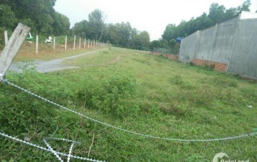 bán 3.5 sào đất ở tại nông thôn gần vành đai 3