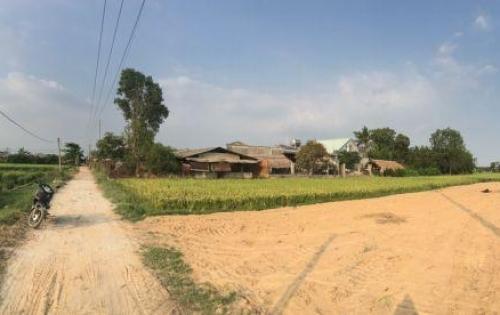 Bán đất Nhơn Trạch giá rẻ 1000m2 gần Quận 2 phà Cát Lái Sổ riêng