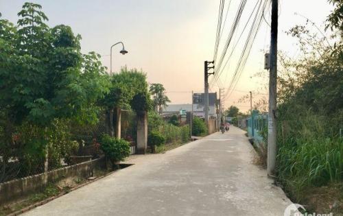 Cần bán gấp đất Nhơn Trạch giá rẻ 1000m2 đường ôtô sổ riêng chính chủ