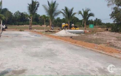 Bán dự án mới ở đường Cây Thông Ngoài