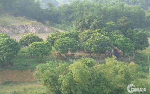 Bán khu đất tại Sông Công, Thái Nguyên chỉ 430.000/m2 chính chủ, sổ đỏ (có ảnh)