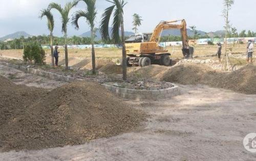 Bán gấp lô đất phường Phước Hòa Phú Mỹ, 100m2 sổ riêng mua sang tên công chứng.