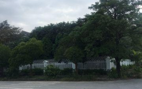 Cần bán 81m2 đất nền khu 12ha thị trấn Lim MT 4.5m