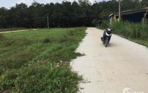 Bán đất nền 2 mặt tiền chỉ 250 triệu/125m2 tại Thị Trấn Trảng Bàng Tây Ninh