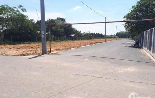 Cần bán gấp vài lô đất mặt tiền Bắc Sơn Long Thành shr lộ giới 60m