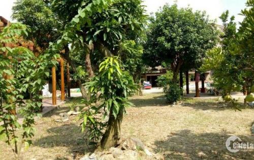 Sang nhượng nhà hàng sinh thái cao cấp 2300m2 mặt ql 379 gia lâm hà nội Sang nhượng nhà hàng sinh thái cao cấp 2300m2 mặt QL 379 Gia Lâm Hà Nội.