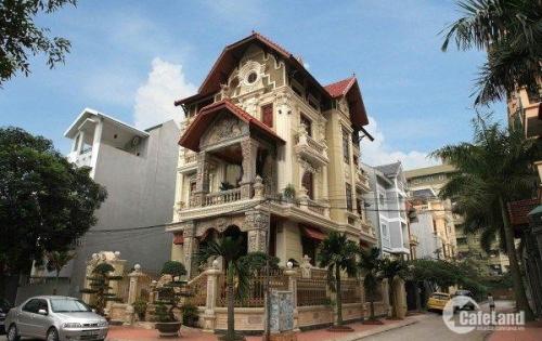 Kinh doanh – buôn bán siêu tốt và lợi nhuận chỉ có tại Biệt thự liền kề Đặng Xá, Gia Lâm.
