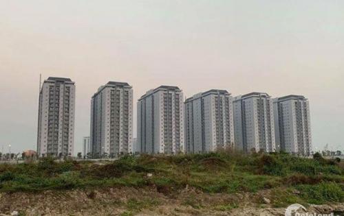 Dự án chung cư cienco mường thanh , thanh hà , kiến hưng hà đông giá chỉ từ 10,5tr/m2